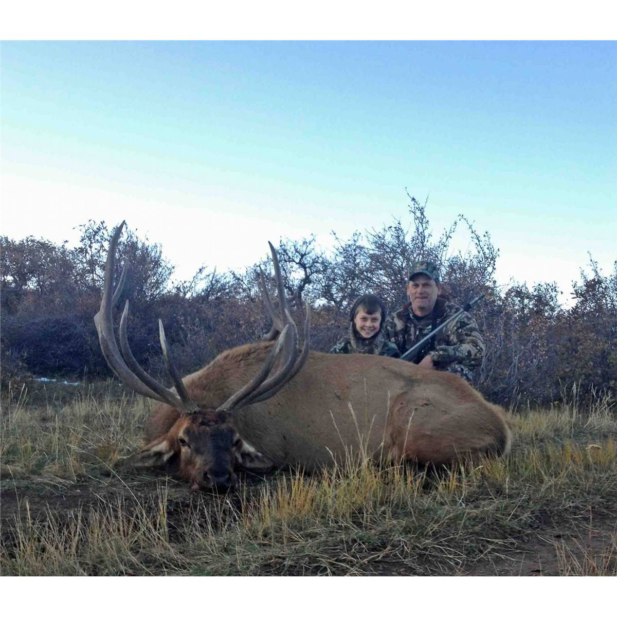 elk mountain single guys Four good elk rifles  better known rocky mountain elk  its one-piece stock makes the rifle wider through the action than a lever action or single shot.