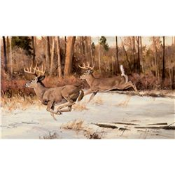 Winter Whitetails by Carlson, Ken