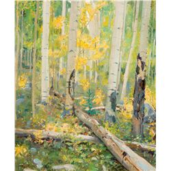 Aspen Forest Near Taos by Phillips, Bert G.