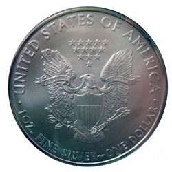 United States 2010 $1,00 Silver Eagle ANACS MS-70, 1 oz of .999 Silver Gem Coin.