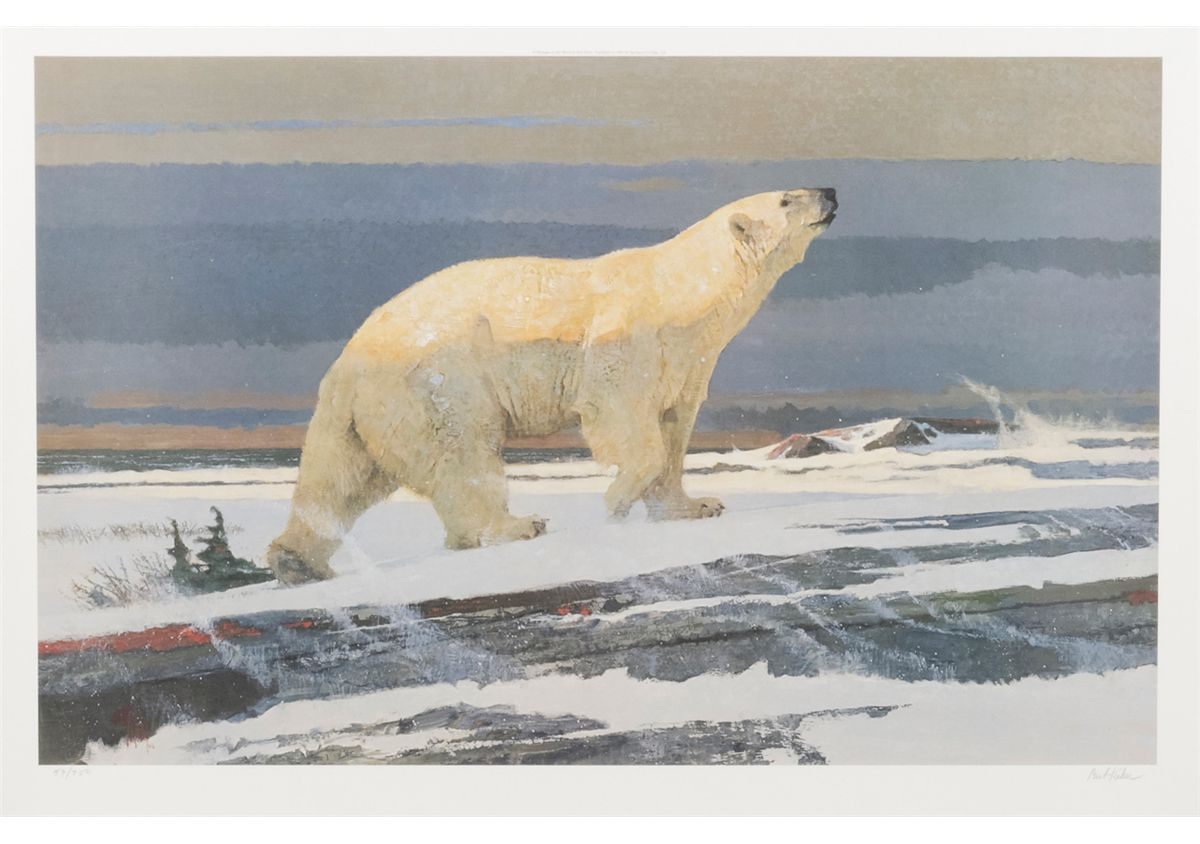 large limited edition hand signed color print of polar bear by