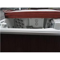 Apollo spa hot tub with cover faux wood surround with for Bathtub covers liners