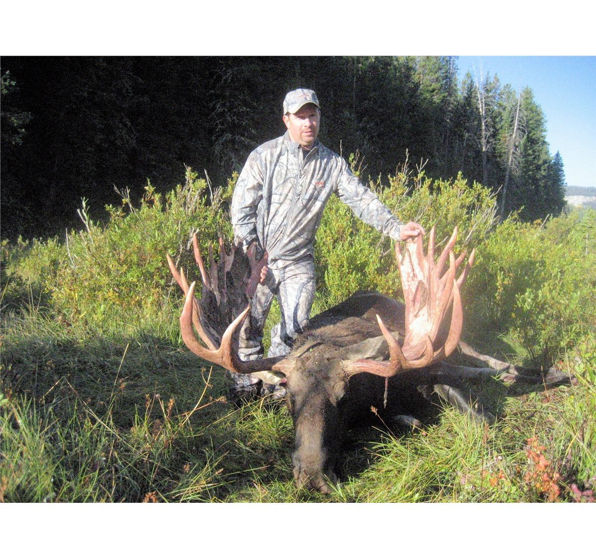Wyoming governor s shiras moose license for Wyoming game and fish license