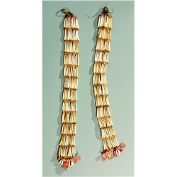 Northern Plains Dentalium Shell Earrings