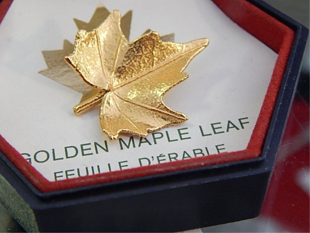 maple leaf case study Case study: maple leaf shoes ltd overview robert clark has three issues to deal with what skills are they seeking the desire candidate would look like.