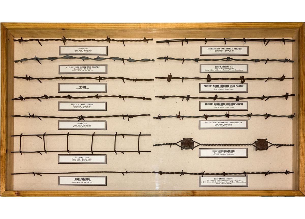 Barbed Wire Display Case 3