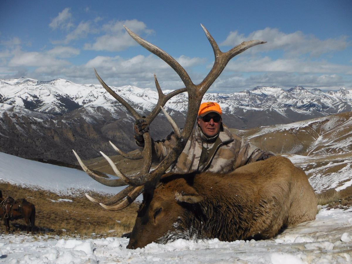 2016 wyoming game fish commissioner s bull elk tag for Wyo game fish