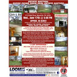 LOT 300 / REAL ESTATE: COMBINED LOT 100 AND LOT 200