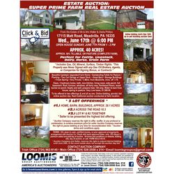 INFO ONLY - NOT A BID LOT-Auction Brochure, R.E. Agreement  and General Terms & Conditions