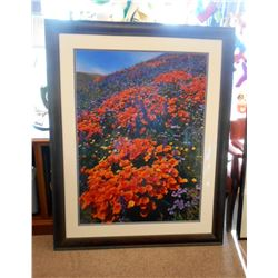 Field of Flowers Mounted and Framed