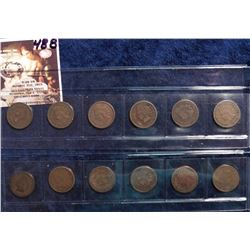 1887-1893, (2) 1895, 1897-1898, & 1900 U.S. Indian Head Cents in a plastic sleeve. G to Very Good. (
