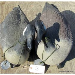 FLOATING GOOSE DECOYS WITH WEIGHTS