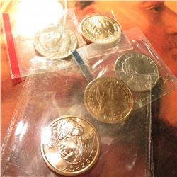 1981 P & S Susan B. Anthony Dollars; (2) 2000 D Native American Dollars; & (2) 2008 D Andrew Jackson