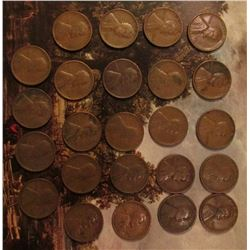 (24) Different Wheat Cents from 1910-1939.