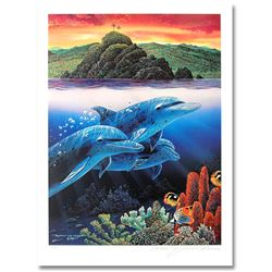 Dolphins of Alau by Robert Lynn Nelson