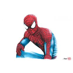 "Spider-Man Limited Edition 8"" x 12"" Signed Comic Art Print by Thang Nguyen #5/25 (PA COA)"
