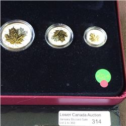RCM Product: Fine Silver Fractional Set of the Maple Leaf 2014.