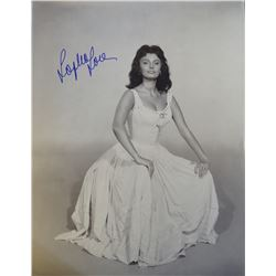 11x14 photo signed by Sophia Loren.