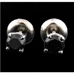 14KT White Gold 0.50ctw Black Diamond Earrings