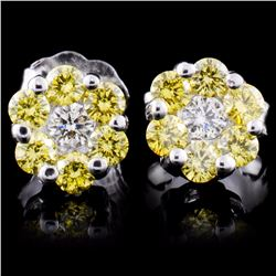 18K White Gold 0.50ctw Fancy Color Diamond Earring