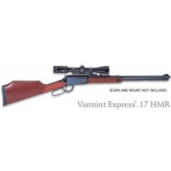 HENRY REPEATING ARMS VARMINT EXPRESS 17 HMR . 619835017000