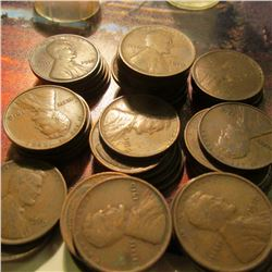 (48) 1910 P Lincoln Cents in a plastic coin tube. Average circulated.