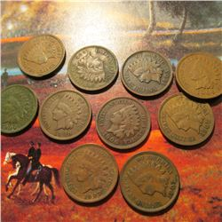 (10) Old U.S. Indian Head Cents. All have Full Liberties and are at least Fine condition.