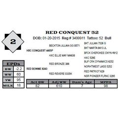 Lot 2 - RED CONQUEST 52