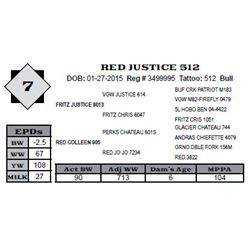 Lot 7 - RED JUSTICE 512