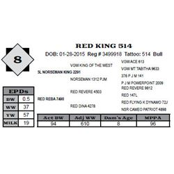 Lot 8 - RED KING 514
