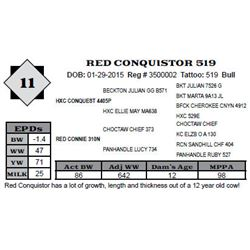 Lot 11 - RED CONQUISTOR 519
