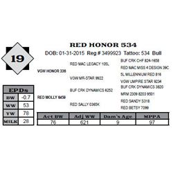 Lot 19 - RED HONOR 534