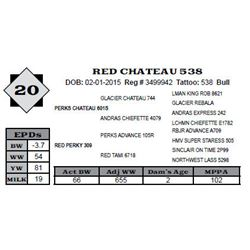 Lot 20 - RED CHATEAU 538