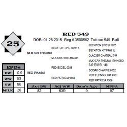 Lot 25 - RED 549