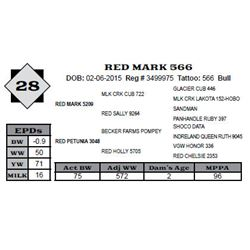 Lot 28 - RED MARK 566