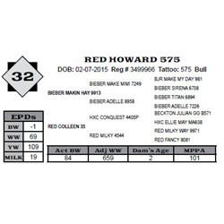 Lot 32 - RED HOWARD 575