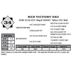 Lot 34 - RED VICTORY 583