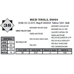 Lot 38 - RED TRILL 5001