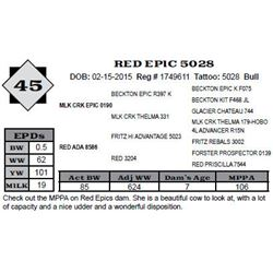Lot 45 - RED EPIC 5028