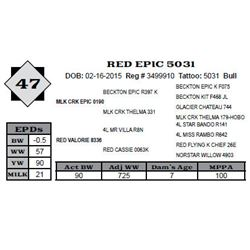 Lot 47 - RED EPIC 5031