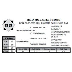 Lot 55 - RED HOLSTER 5058