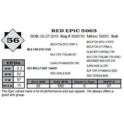 Lot 56 - RED EPIC 5065