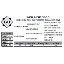 Lot 63 - RED LINE 5089