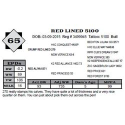 Lot 65 - RED LINED 5100