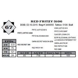 Lot 67 - RED FRITZY 5106