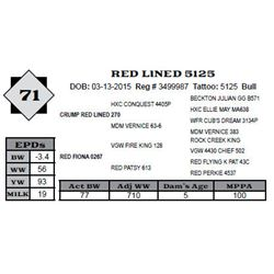 Lot 71 - RED LINED 5125