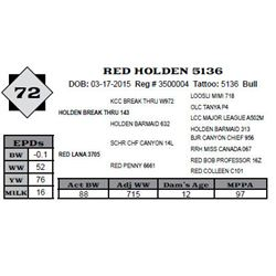 Lot 72 - RED HOLDEN 5136