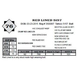 Lot 76 - RED LINED 5157