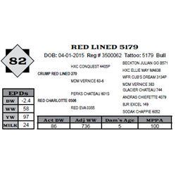 Lot 82 - RED LINED 5179