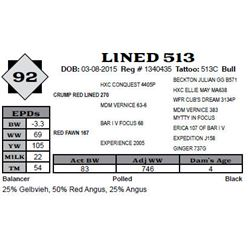 Lot 92 - LINED 513